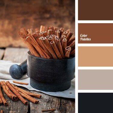 Winter Color Schemes